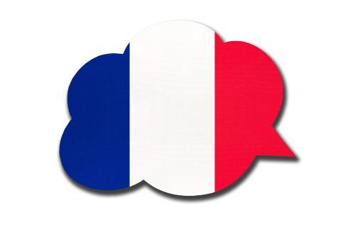 مفردات اللغة الفرنسية