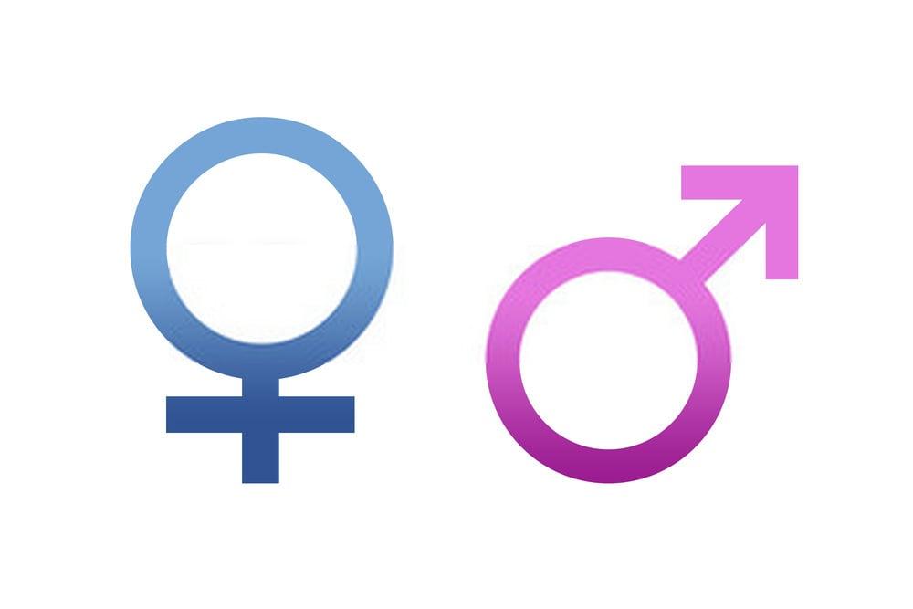 الجنس فى اللغة الاسبانية Género وقواعد تحديد جنس الاسم (مذكر أو مؤنث)